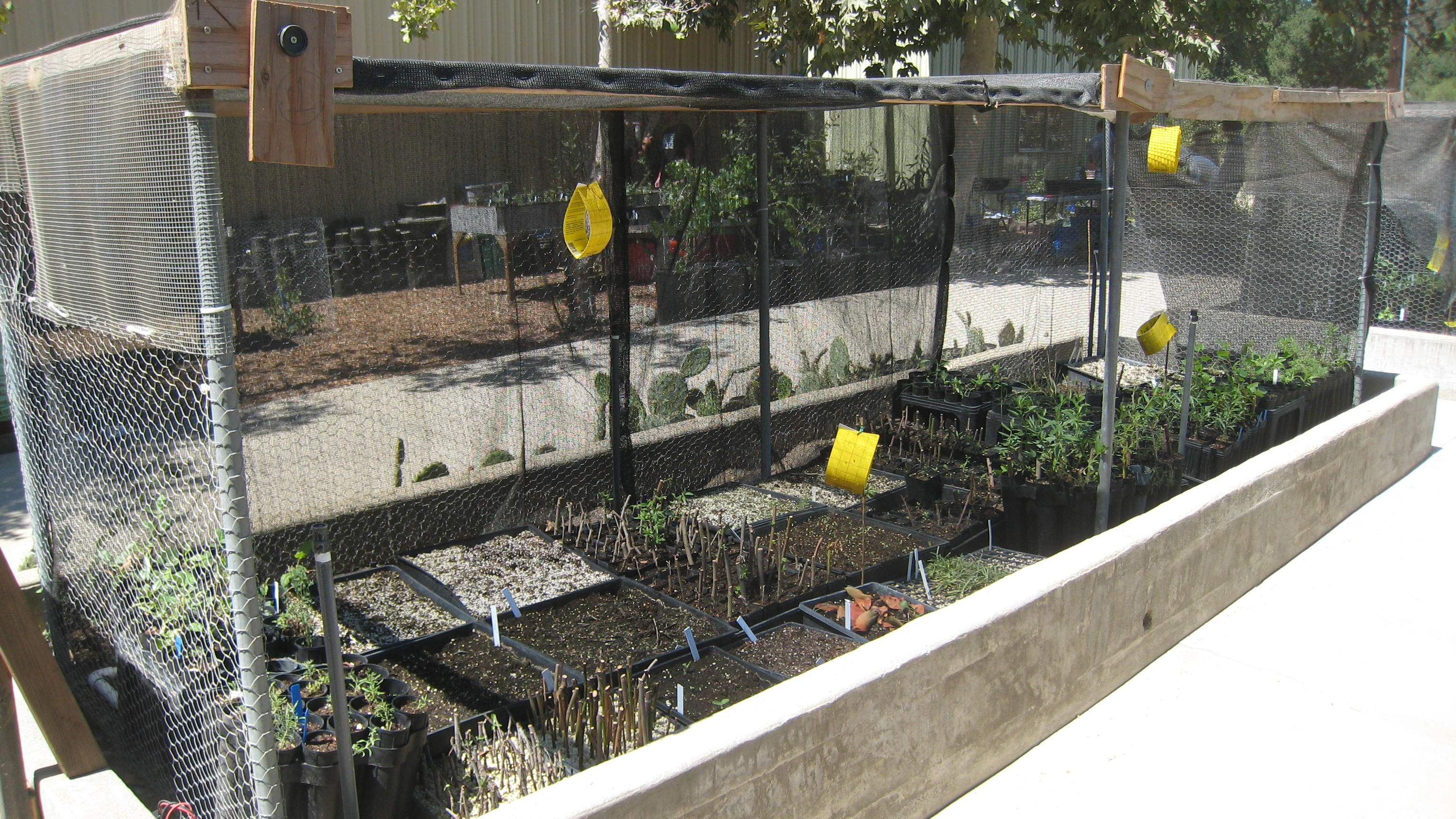 Hahamongna Nursery | Arroyo Seco Foundation